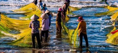 Men and women fish on the Vietnamese coast. Photo: Nguyen Thanh Cuong