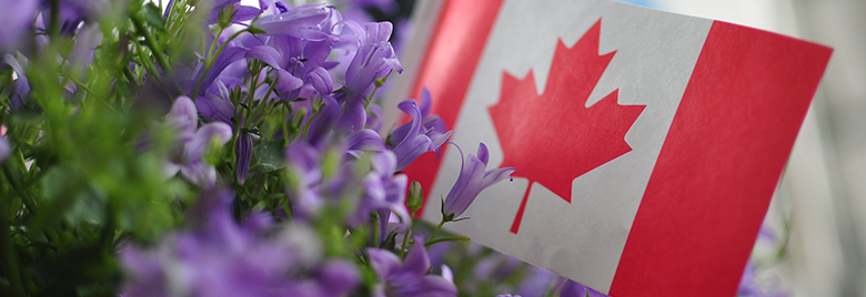 Canadá brinda apoyo a Colombia para enfrentar el Covid-19